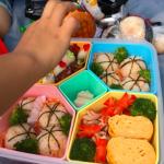 芸能人有名人ママさんが作る>>ピクニック弁当の特集だよー。