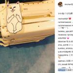 猫好き☆梨花さん新しいスマホケースは[RIPNDIP]