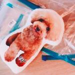 紗栄子さんトイプードル型クッションはコチラ>>