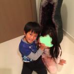 市川海老蔵さんご自宅の紫水晶ドームがデカすぎる>>いくらで買える?特大アメジストドーム風水効果